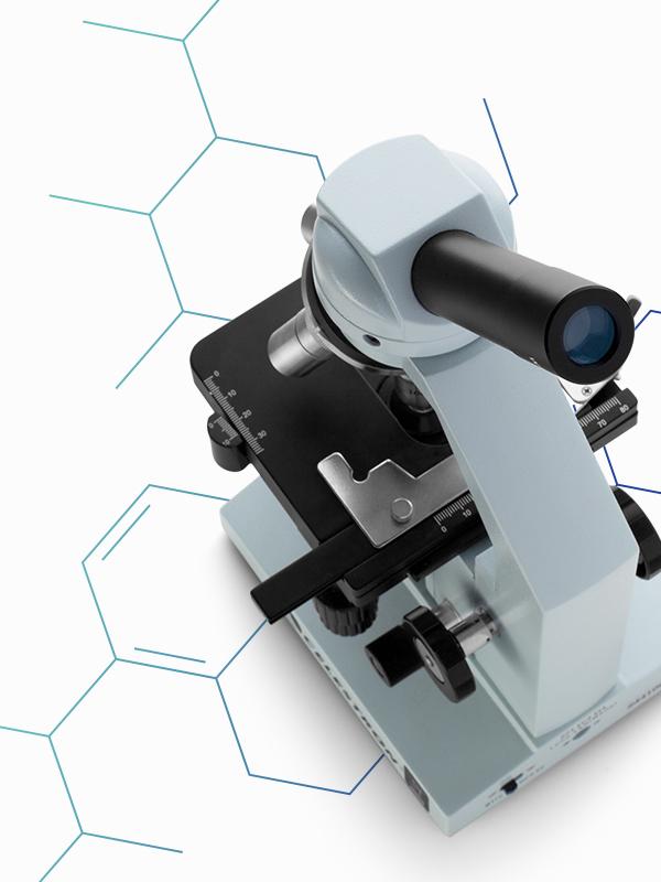 microscope collagen